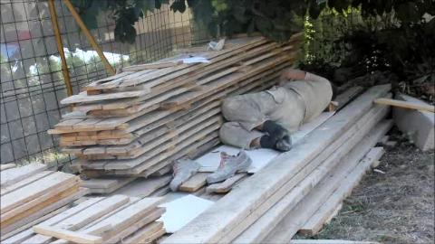 Dok dvojica radnika rade, treći spava u hladovini na gradilištu