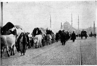 izbjegli-muslimani