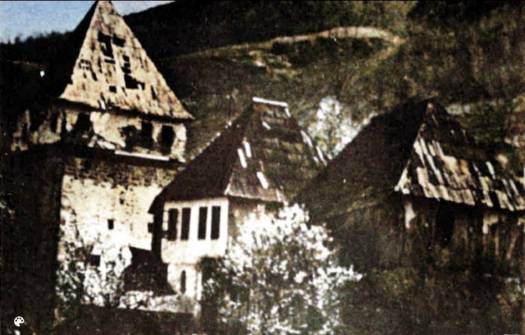 A Staro Selo, Hamid Habibović